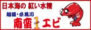 「越後・糸魚川 南蛮1エビ プロジェクト」